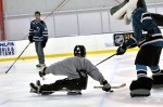 sharkie, san jose sharks, borp, paralympics, sled hockey